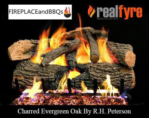 "Picture of 30"" Charred Evergreen Oak"