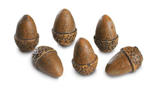 Picture of 6 Acorns
